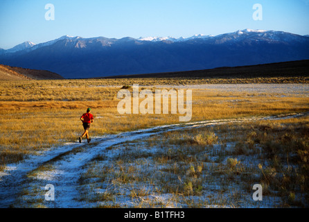 Lone  male trail runner in the Eastern Sierra Mountain, California - Stock Photo
