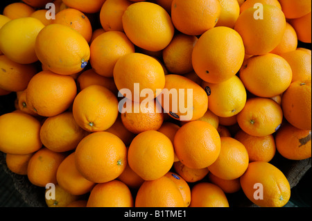 Oranges for sale in green grocers shop. Picture by Jim Holden. - Stock Photo
