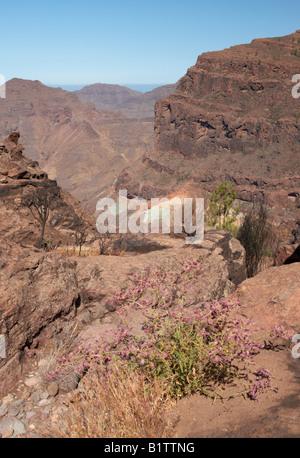 Los azulejos layers of volcanic rock coloured rock formation stock photo 13865683 alamy - Los azulejos gran canaria ...