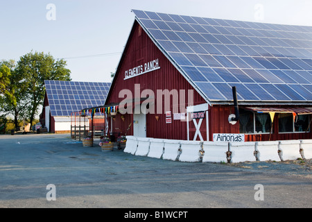 Solar panels on farm buildings. - Stock Photo