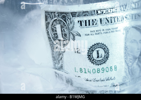 Frozen dollar in a block of ice - Stock Photo