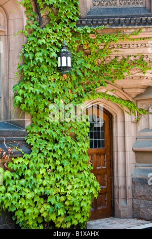Princeton University NJ Ivy wall and side door at the Andlinger Center for the Humanities - Stock Photo