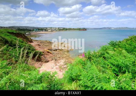 Overlooking the rocky shoreline at Goodrington South near Paignton in Devon with blue sky and white clouds wildflowers - Stock Photo