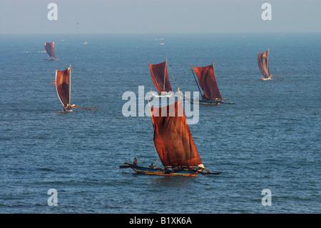 Catamarans in sri lanka, asia, indian, ocean - Stock Photo