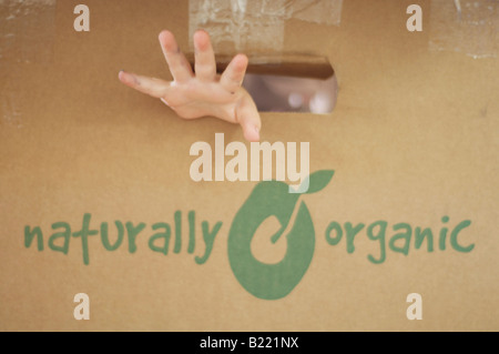 child sitting in organic vege box - Stock Photo