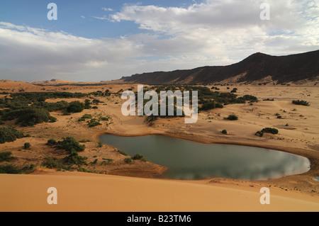 Giant sand dune in the Sahara near Atar Western Africa Mauritania Africa - Stock Photo