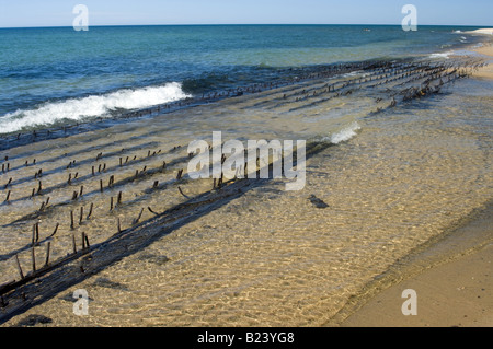 Shipwreck decaying timbers on the beach Au Sable Point Lake Superior Pictured Rocks National Lakeshore Michigan - Stock Photo