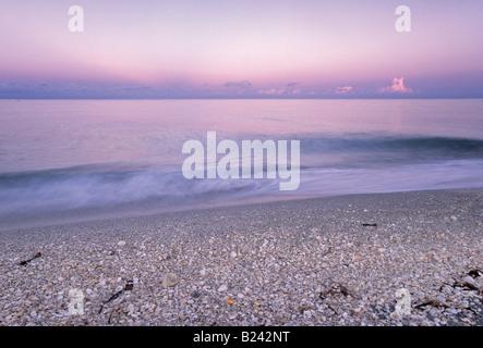 Seashells on beach sunrise Bowmans Beach County Park Sanibel Island Florida USA - Stock Photo