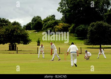 Village cricket at Ragley Hall, Warwickshire, England, UK - Stock Photo