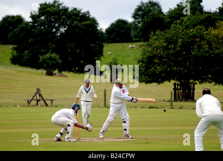 Village cricket at Ragley Hall, Warwickshire, England, UK - Stock Photo