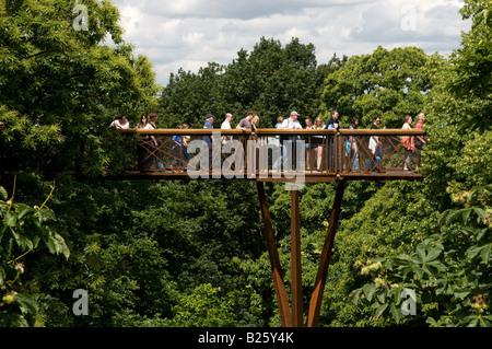 Xstrata Treetop Walkway at Kew Gardens, London, England UK - Stock Photo