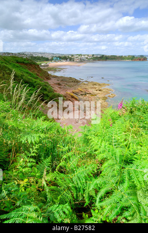 Overlooking the rocky shoreline at Goodrington South near Paignton in Devon with blue sky and white clouds - Stock Photo