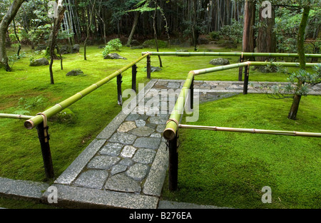 Rich moss growing beside pathway leading to entrance at Koto In Temple in Kyoto - Stock Photo