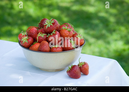 A bowl of freshly picked strawberries on a white linen covered table outside - Stock Photo