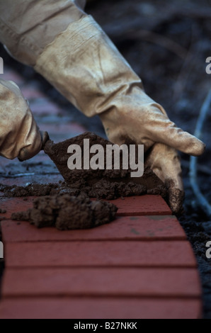 The gloved hands of a Mason using a trowel to place mortar between red clay bricks making the edge a backyard patio - Stock Photo