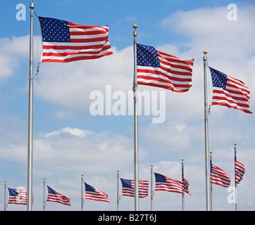 Low angle view of American flags, Washington DC, United States - Stock Photo