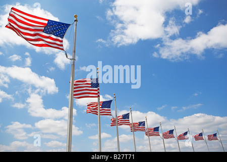 Low angle view of American flags - Stock Photo