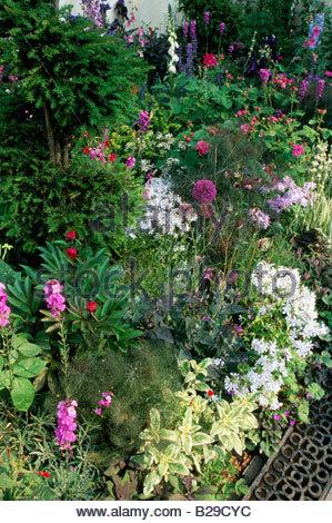 Chelsea Flower Show 1998 Design Tim Stuart Smith Knot garden Boxwood on
