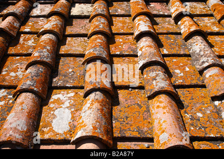 detail of terracotta roof tiles castellina in chianti tuscany southern italy europe - Stock Photo