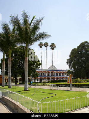 Cuban Royal Palms, Roystonia regia, Arecaceae Growing in the Municipal Palace Gardens, Santa Maria del Tule Oaxaca - Stock Photo