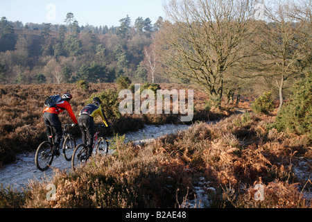 Mountain Bike Riders on a Well Worn Trail in Winter - Stock Photo