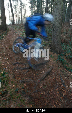 Blurred Mountain Biker Rides through Trails in the Guildford Area of Dorking/Surrey Hills - Stock Photo