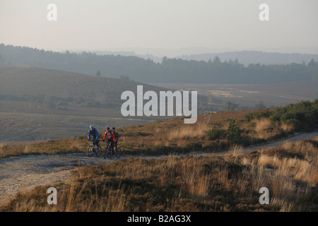 Three Mountain Bike Riders Ride in the Surrey Hills near Box Hill in Surrey - Stock Photo