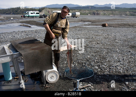 Fisherman ready to filleting a salmon he just caught in the Copper River near Chitina, Alaska - Stock Photo