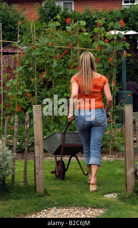 Woman pushing wheelbarrow in country garden southern England UK - Stock Photo