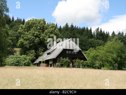 Black Forest Farm at Groppertal near Villingen