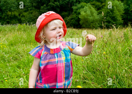 Horizontal portrait of an 18-month old little girl with a bright red sunhat on playing with dandelion clocks on - Stock Photo