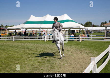 A rider in the hunter jumper ring during an equestrian competition at the High Desert Classic an equestrian event - Stock Photo