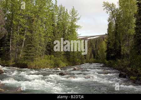 White water river cutting its way though the Alaskan wilderness. - Stock Photo