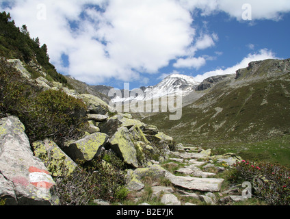 Hiking trail at zillertal Circuit - Stock Photo