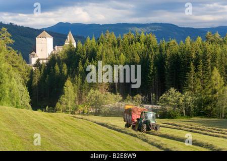 Tractor harvesting in field Mauerndorf Lungau Salzburg Austria - Stock Photo