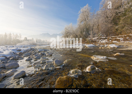 River flowing through forest, Taugl, Hoher Goell, Tennengau, Berchtesgaden Alps, Salzburg, Austria - Stock Photo