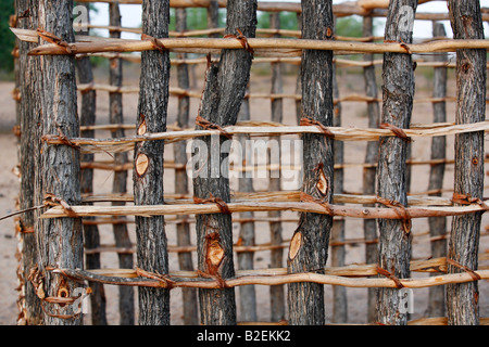 The start of a wall of a hut during construction made from mopane poles and cross sticks tied together with strips - Stock Photo