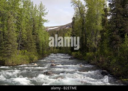 White water river running wild in the Alaskan wilderness. - Stock Photo