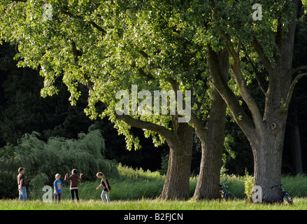 Group four children kids playing under huge oak trees in park in Rotterdam, Netherlands - Stock Photo