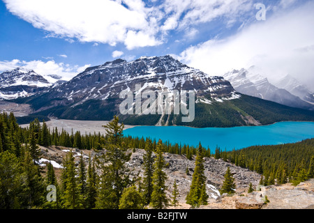 Peyto Lake viewed from Bow Summit in Banff National Park Canada on a sunny June date - Stock Photo