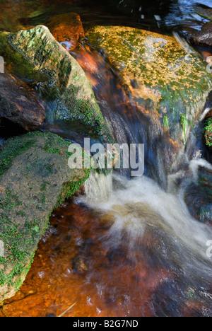 Farbenspiel an Steinen in der Oder im Hochharz bei Torfhaus Nationalpark Harz Sachsen Anhalt Deutschland - Stock Photo