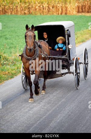 The Amish, or Plain People, in Pennsylvania's Lancaster County, still use horse drawn buggys for transportation - Stock Photo