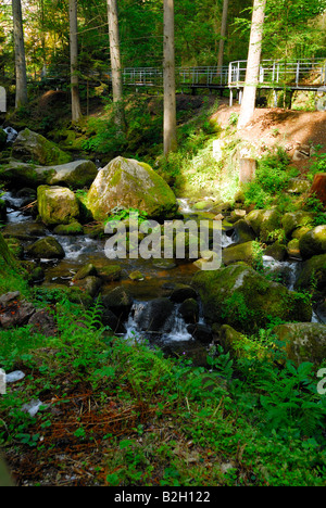 The Triberg Wasserfall waterfall where the Gutach River plunges over a series of cascades two kilometers long and - Stock Photo