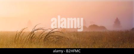 morning mist landscape Eifel Highland Hohes Venn Germany - Stock Photo