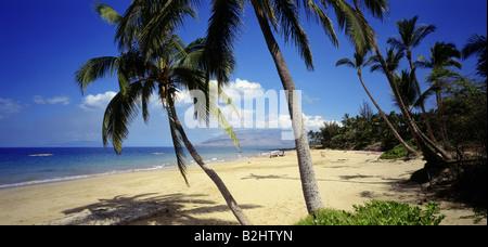 geography / travel, USA, Hawaii, Maui, beach of Kihei, panoramic view, palm tree, sea, - Stock Photo