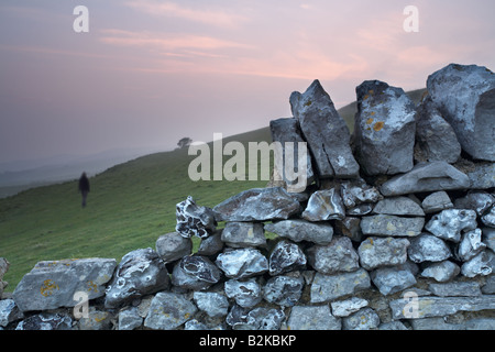 Person walking across a field beyond a dry stone wall at sunset, near Abbotsbury village, Dorset county, England, - Stock Photo