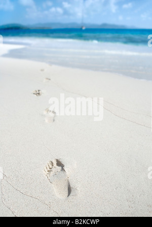 Footprints on a sunny tropical beach in the Caribbean