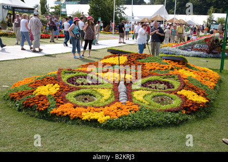 RHS Flower Show at Tatton Park 2008 - flower bed - butterfly - Stock Photo