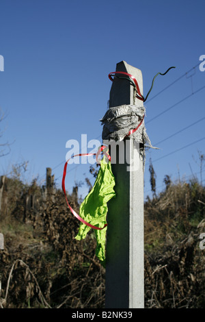 one green burst balloon tied to post outdoors in sun - Stock Photo