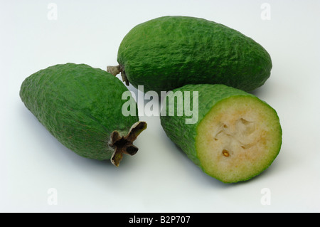 Feijoa, Pineapple Guava, Guavasteen (Acca sellowiana, Feijoa sellowiana), fruit, studio picture - Stock Photo